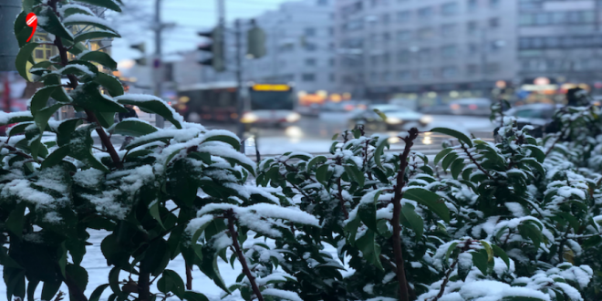 Kar Yağışı Avusturya'nın Batısında Etkili